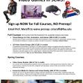 FAU_VideoGameCourses_Flyer2020print